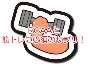 BCAAと筋トレに必須のサプリ