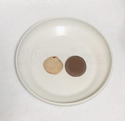 Atkins オーガニック・ピーナッツバターカップ ミルクチョコレートとカントリーマアムのサイズ比較